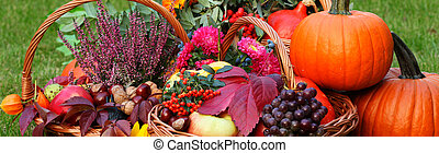Fall fruits and vegetables in wicker basket