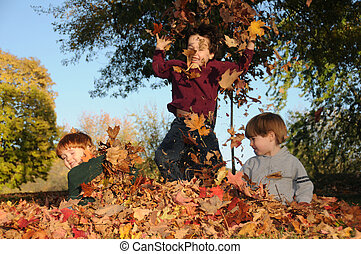 Three brothers romp in the fallen leaves on a sunny autumn afternoon