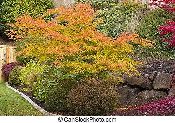 Fall Garden and Yard