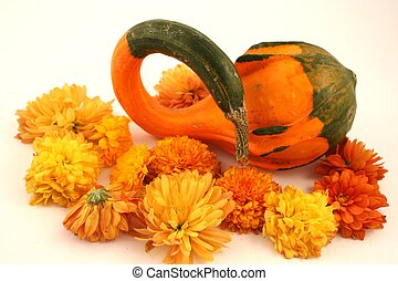 Fall Gourd - A gourd with a twisted top and some fall mums