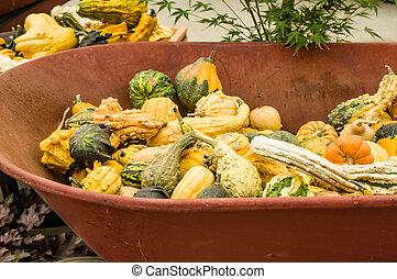 Fall gourds in a wheel barrow