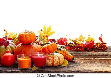 Fall harvest of pumpkins