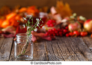 Fall harvesting on rustic wooden background