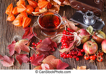Fall harvesting on rustic wooden table with vintage camera