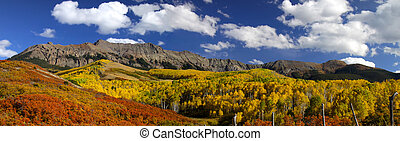 Colorful trees in the San Juan scenic mountain area