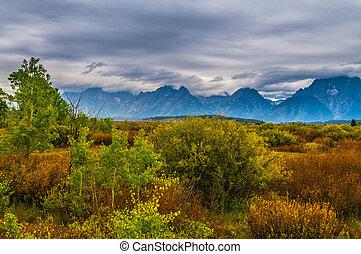 Fall in Grant Tetons