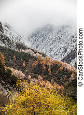 fall in mountain of China