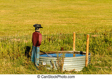 Fall in Steamboat Springs Colorado - Rancher humor with...