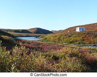 Fall in the Tundra
