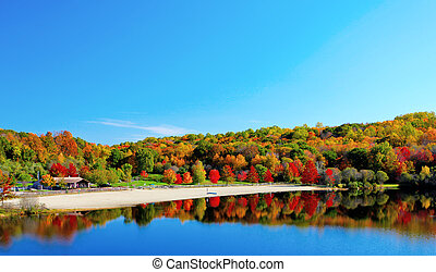 Fall lake - Beautiful lake view and trees during the fall