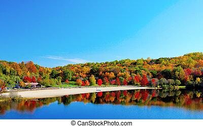 Fall lake - Beautiful lake view and trees during the fall