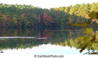 fall lake rack focus