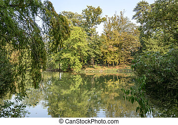 fall landscape at lake in Villa Reale park, Monza, Italy