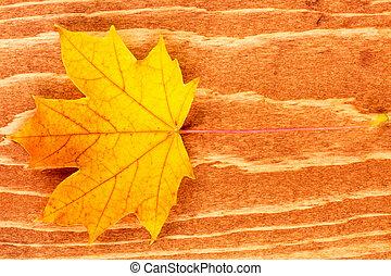 Fall leaf on brown wood background