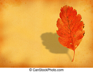 fall leaf with retro copy space