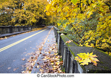 Fall Leaves Along Historic Columbia Highway Bridge with Blurred Background