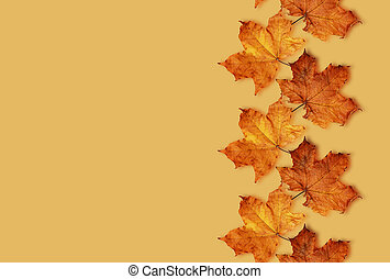 Fall leaves background - Fall leaves line on brown ...