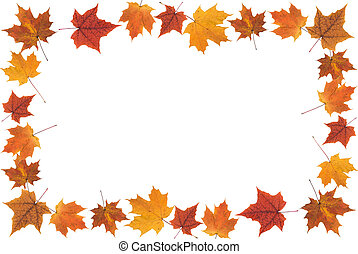 fall leaves frame