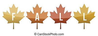 Fall leaves illustration design