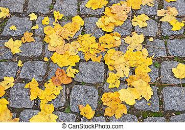 Fall leaves on cobblestone