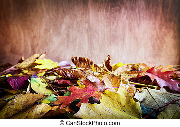 Fall leaves on wooden background. Colorful autumn