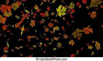 This perfectly seamless (no fade) loop features colorful autumn leaves falling in a swirling fall whirlwind. Leaves are in shades of red, orange, gold, green, and brown against a black background.