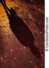 fall light and shade - fall shadow