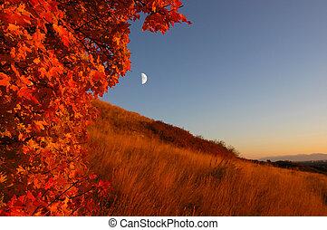 Moonrise during fall