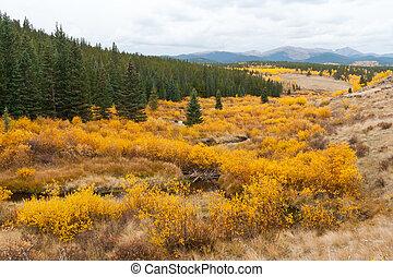 Fall Mountain Landscape in Colorado