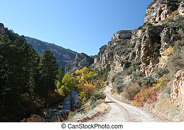 fall mountain road