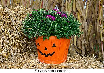 fall mum pumpkin basket