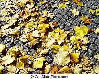 fall on cobblestone