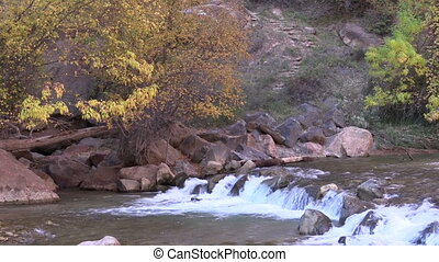 Fall on the Virgin River Zion National Park - a small...