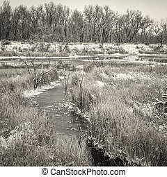 fall or winter scenery of wetlands - fall or winter scenery ...