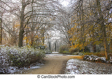 Fall park with snow