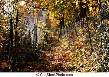 Fall Path in Berlin