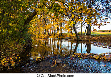 Fall reflections in a stream, in rural Frederick County, Maryland.