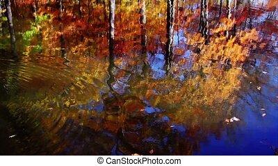 Fall Reflections Loop