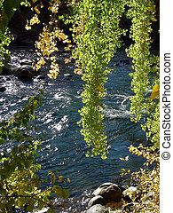 Fall River