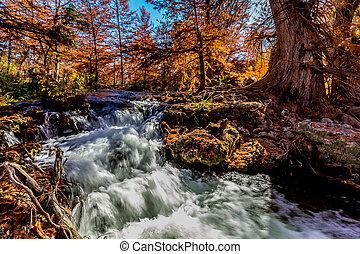Fall River Run