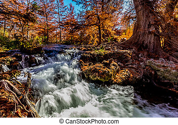 Waterfalls and Beautiful Fall Foliage Surrounding the Guadalupe River, Texas.