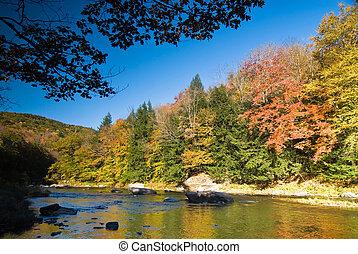 Fall river scenery