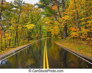Wet road during the fall foliage season in New Hampshire