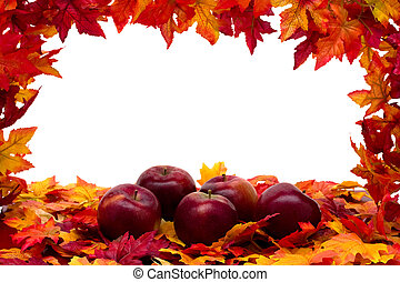 Fall Scene - Fall leaves with red apples on white...