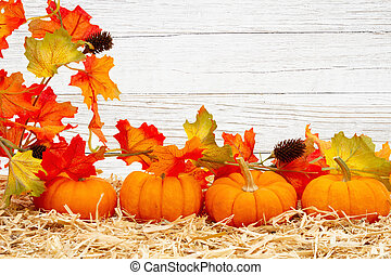 Fall scene with orange pumpkins and fall leaves on straw hay with weathered whitewash wood background