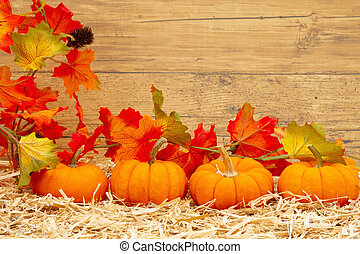 Fall scene with orange pumpkins and fall leaves on straw hay with weathered wood background