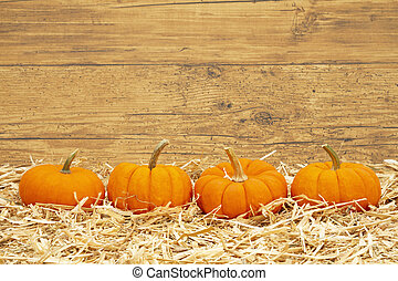 Fall scene with orange pumpkins on straw hay with weathered wood background