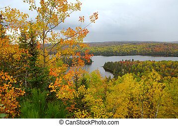 Fall scenery - Scenic view of autumn forest and hills in...