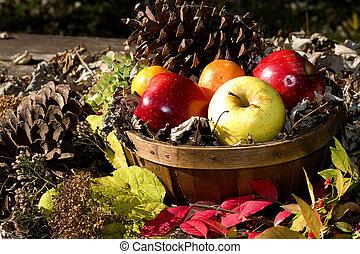 Fall Season Apples in Basket