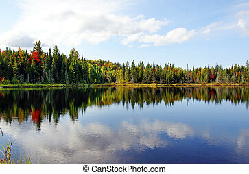 Beautiful sunny day during fall in Northern Canada forest with some red amd orange maple trees reflected by a calm water lake.